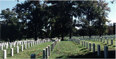 Here Rests in Honored Glory: Arlington Cemetery