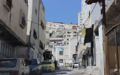 Not Turning the Other Cheek: Peaceful Resistance in Occupied Palestine
